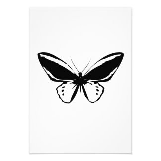 Mariposa Comunicado Personal