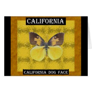 Mariposa de la cara del perro de California Tarjeta De Felicitación