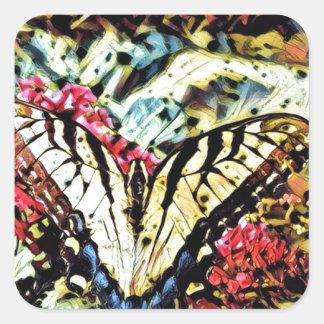 Mariposa de la mariposa o pegatina cuadrada