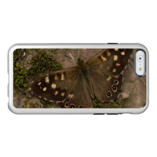 Mariposa de madera manchada funda para iPhone 6 plus incipio feather shine