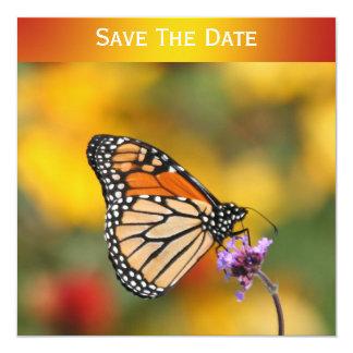 Mariposa de monarca en busca del polen anuncio personalizado