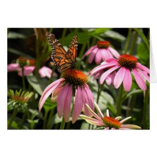 Mariposa de monarca en Coneflower Tarjeta