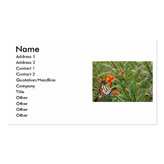 Mariposa de monarca en la planta anaranjada roja tarjetas de visita