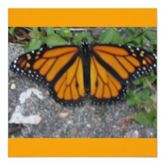 Mariposa de monarca invitación 13,3 cm x 13,3cm