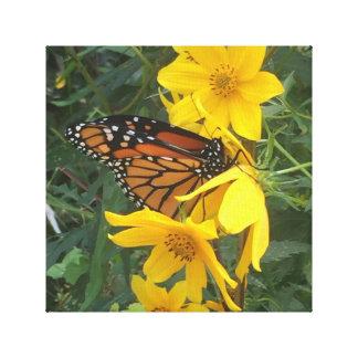 Mariposa de monarca lienzo
