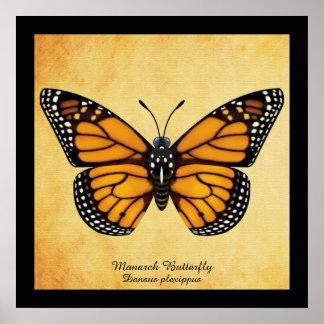 Mariposa de monarca póster