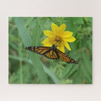 Mariposa de monarca, rompecabezas de la foto