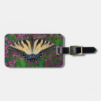 Mariposa de Swallowtail en púrpura Etiquetas Para Maletas
