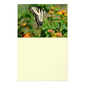 Mariposa de Swallowtail Tarjetas Informativas
