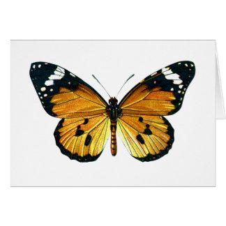 Mariposa del chrysippus del Danaus Tarjeta De Felicitación