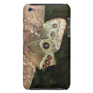 mariposa dura del caso del sheel del tacto de iPod iPod Touch Case-Mate Protectores