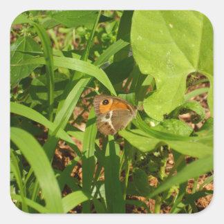 Mariposa en la hierba pegatina cuadrada