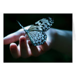 mariposa en la mano tarjeta