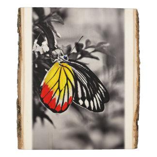 Mariposa en las flores #3 panel de madera