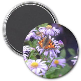 Mariposa en las flores imanes