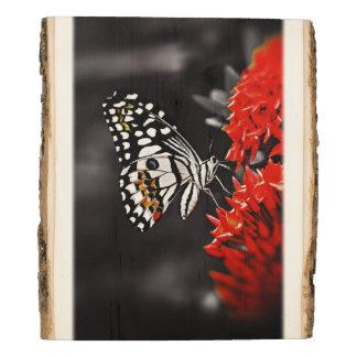 Mariposa en las flores panel de madera