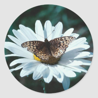 Mariposa en una margarita 1 pegatina redonda