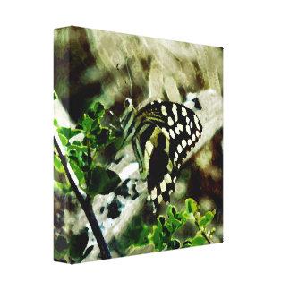 Mariposa en una ramita impresión en lienzo