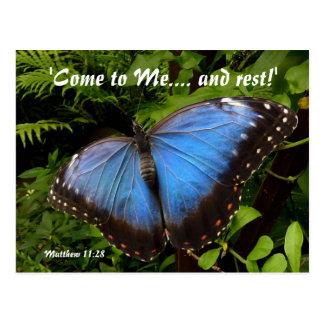Mariposa exótica azul postal