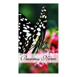 Mariposa hermosa en la flor roja tarjetas de visita