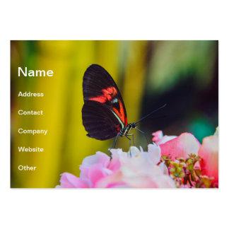 Mariposa negra roja en una macro de la flor tarjetas de visita grandes