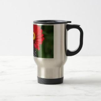 Mariposa negra taza roja del acero inoxidable de
