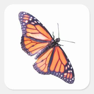 Mariposa Pegatina Cuadrada