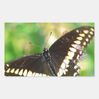 mariposa pegatina rectangular