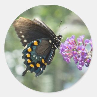 mariposa pegatina redonda
