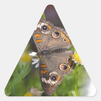 Mariposa Pegatina Triangular