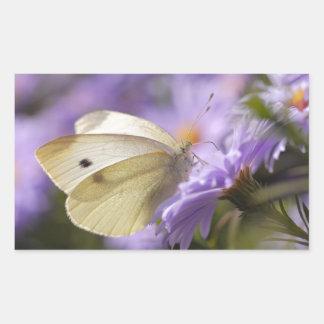 Mariposa que alimenta en la flor rectangular pegatinas