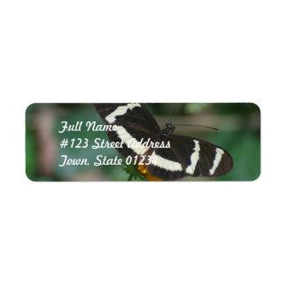 Mariposa rayada blanco y negro etiqueta de remitente