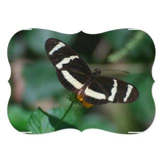 Mariposa rayada blanco y negro invitación 12,7 x 17,8 cm