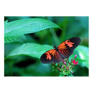 Mariposa roja y negra tarjetas de visita grandes