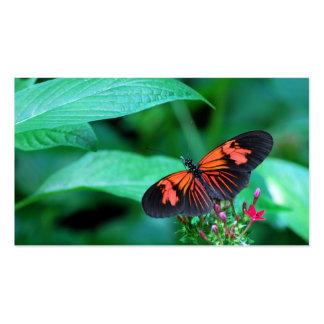 Mariposa roja y negra tarjetas de visita