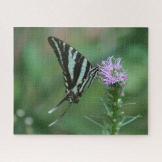 Mariposa, rompecabezas de la foto