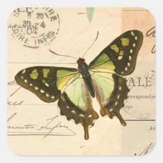 Mariposa rústica del vintage en pegatina verde