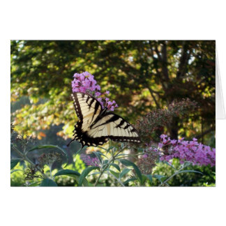 mariposa tarjeta de felicitación