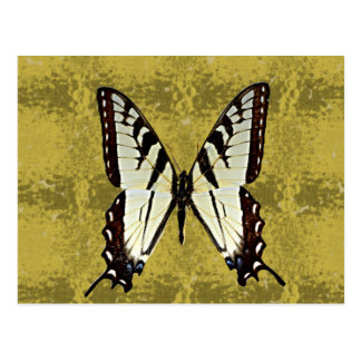 Mariposa (tigre del este Swallowtail) Postal