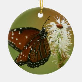 Mariposa y mariquita adorno para reyes