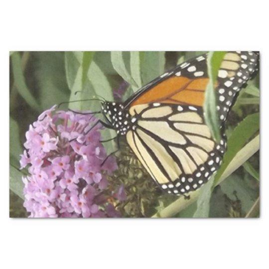 Mariposa y papel seda púrpura de la flor