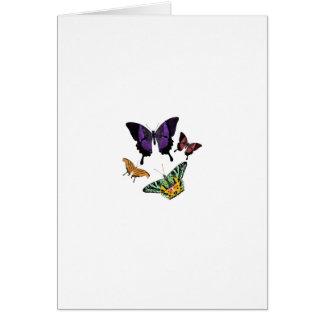 mariposas bonitas tarjeta de felicitación