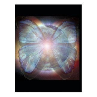 Mariposas hermosas postal