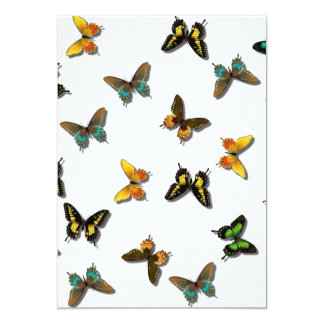 Mariposas Anuncios