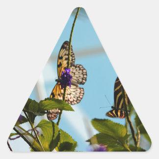 Mariposas Pegatina Triangular