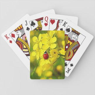 Mariquita amarilla del rojo de la buena suerte de baraja de cartas