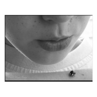 Mariquita blanco y negro postal