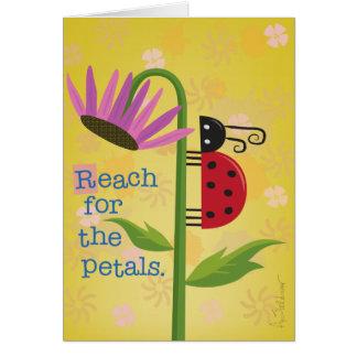 Mariquita brillante en tarjeta de felicitación