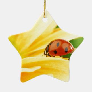 Mariquita en el girasol ornamente de reyes