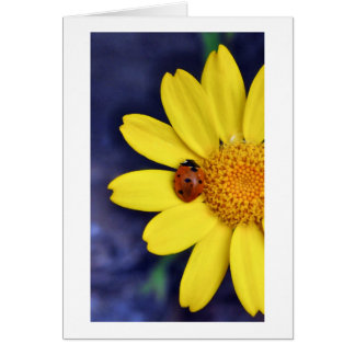 Mariquita en la flor tarjeta de felicitación